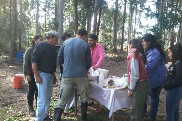 Cafesg e INTA concretaron la primera etapa del curso de producción porcina familiar Saber de Cerdos