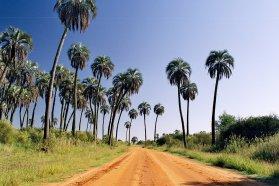 La Secretaría de Ambiente traza lazos con la Red Argentina de Reservas Naturales Privadas