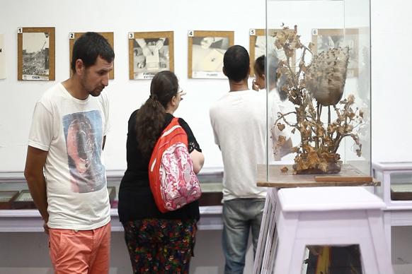 Se realizó una nueva edición de la Noche de los Museos con renovadas propuestas