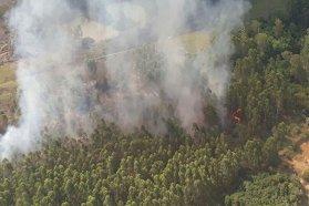 La provincia trabaja con bomberos para prevenir incendios forestales