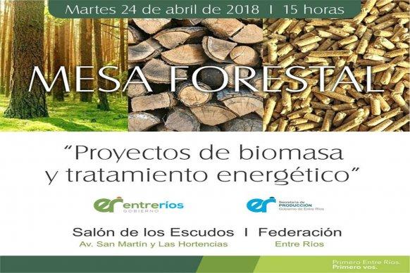 Se tratará en la Mesa Forestal proyectos de biomasa y tratamiento energético