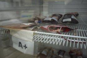 El banco de sangre del hospital San Roque avanza en la seguridad transfusional