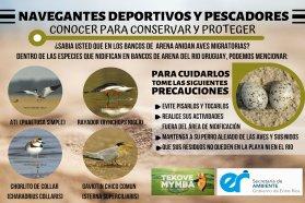 Piden a navegantes y turistas no molestar a las aves migratorias que en esta época anidan en la arena