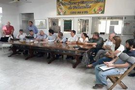 Provincia, municipios y entidades trabajan en la problemática del HLB en área urbana