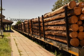 Con los puertos entrerrianos operativos, se reactiva el ferrocarril de carga