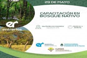 Capacitarán en Protección Ambiental y Ordenamiento Territorial  de los Bosques Nativos