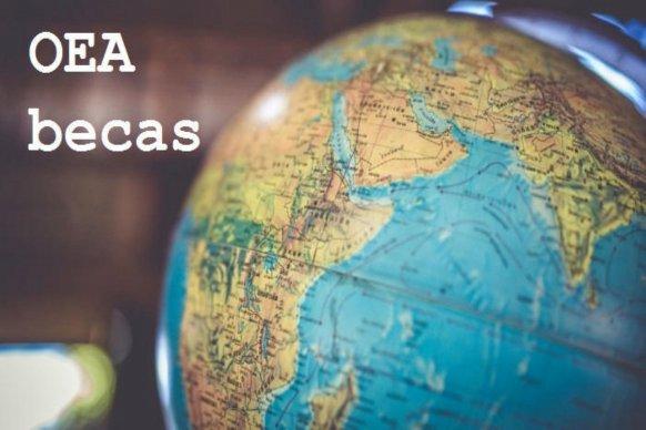 La Organización de Estados Americanos ofrece becas para estudios de posgrado en Brasil y España