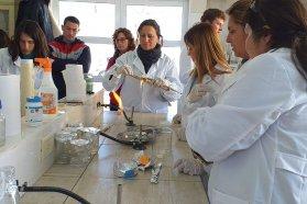 Segundo encuentro de capacitación en técnicas de cultivo in vitro en vegetales para docentes de escuelas agrotécnicas