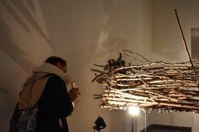 Diana Campos hará un recorrido dialogado en el Museo de Bellas Artes