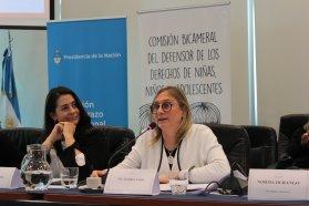 Entre Ríos presentó en el Congreso de la Nación sus avances con el Plan ENIA