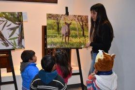 Producción busca promover el cuidado de la naturaleza a través del arte