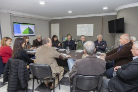 El Comité de Crisis del Ministerio de Salud se reunió con autoridades de Femer