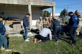 Rescataron una aguará guazú que había sido vista en el casco urbano de Paraná