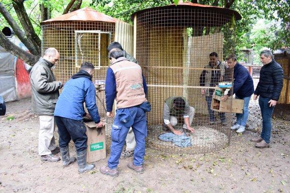 La provincia trasladó más de 20 especies de la fauna silvestre a su hábitat natural