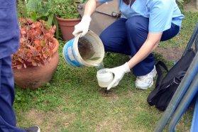 Continúan las acciones de prevención de dengue en la provincia