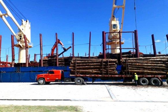 Cumpliendo con las normas sanitarias se completa la carga de rollizos con normalidad en Puertos