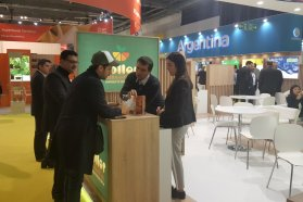 Brindan asesoramiento on line en comercio exterior