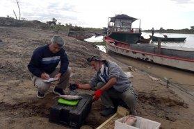 Brindan detalles sobre la bajante del río Paraná y preservación del recurso ictícola