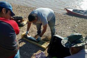 Monitorean y evalúan el recurso pesquero en Diamante