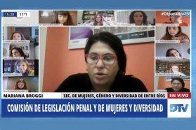 La provincia presentó las políticas públicas en materia de género ante diputadas de la Nación