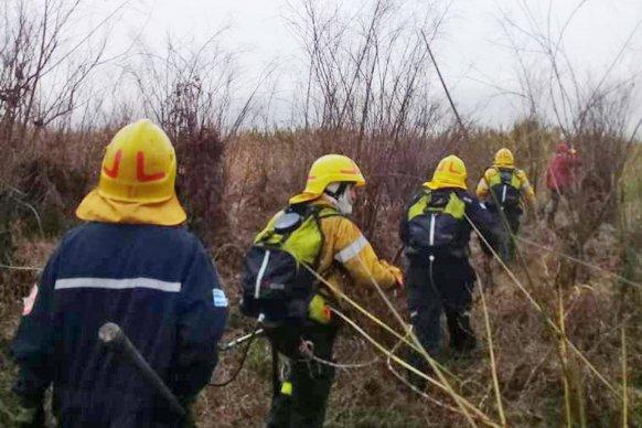 Brigadistas continúan trabajando en zonas del delta del Paraná