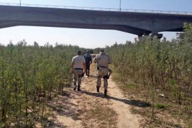 Continúan las tareas de combate del fuego en zonas del Delta del Paraná