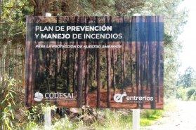 Codesal comenzó los trabajos para la prevención de incendios en el perilago