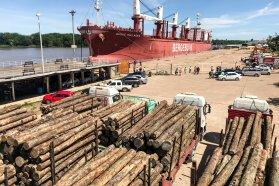 La exportación forestal a través de los puertos entrerrianos ha generado más de 3.000 millones de pesos