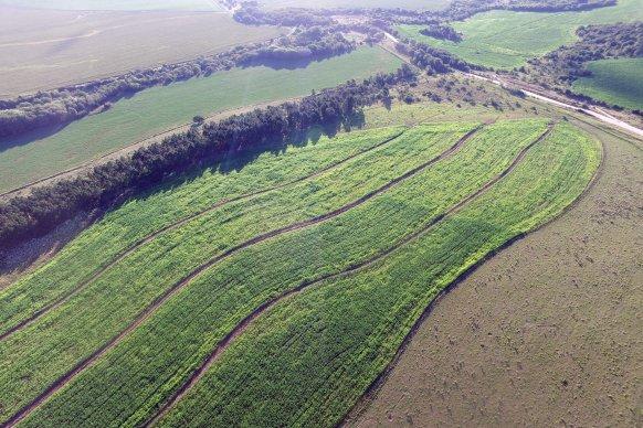 Se extiende hasta marzo el plazo para presentar proyectos de conservación de suelos y acceder a beneficios fiscales