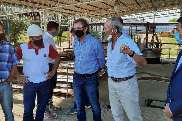 Trabajo coordinado entre la provincia y el sector privado para potenciar a la avicultura