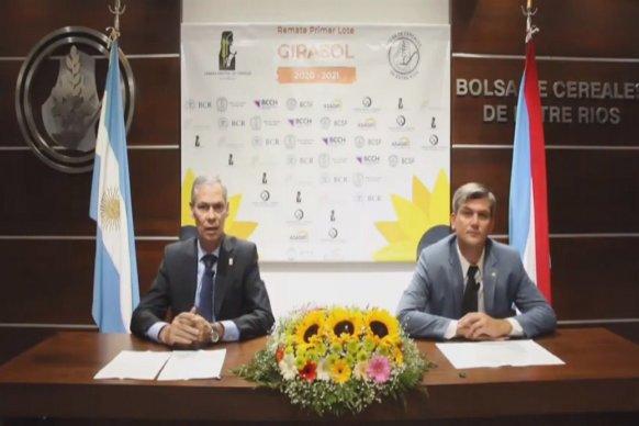 Destacan la oportunidad para que Argentina vuelva a ser protagonista en el mercado internacional del girasol