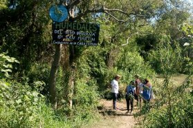 Cuidadores de la Casa Común invitan a realizar recorridos guiados por los humedales de Paraná