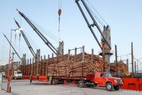 Los puertos entrerrianos mejoran los tiempos de carga y fortalecen el comercio exterior