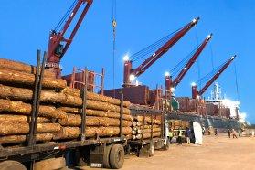 Dos buques cargan en simultáneo en los puertos entrerrianos
